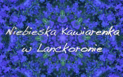 Niebieska Kawiarenka w Lanckoronie